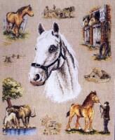 Страна лошадей.