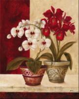 """Теги. цветы в горшках.  Гамма, 58 цветов. кашпо. красота.  ИринаMedvedeva.  Портал  """"Вышивка крестом """"."""