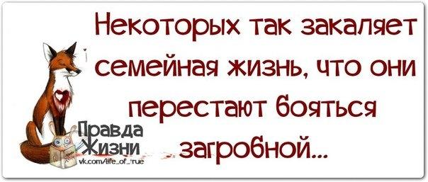 http://data9.gallery.ru/albums/gallery/207384-6dc50-83461738--u18ab1.jpg