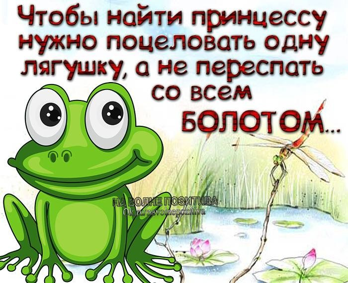 http://data9.gallery.ru/albums/gallery/207384-c89a8-83461735--u8251f.jpg